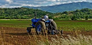 Tην προστασία των εμπόρων-παραγωγών ζητάει ο ΣΥΡΙΖΑ!