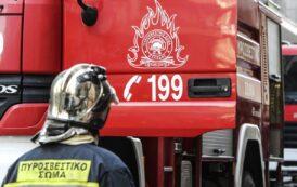 3 Εργάτες Πυρασφάλειας θα προσληφθούν στον Δήμο Νάουσας!